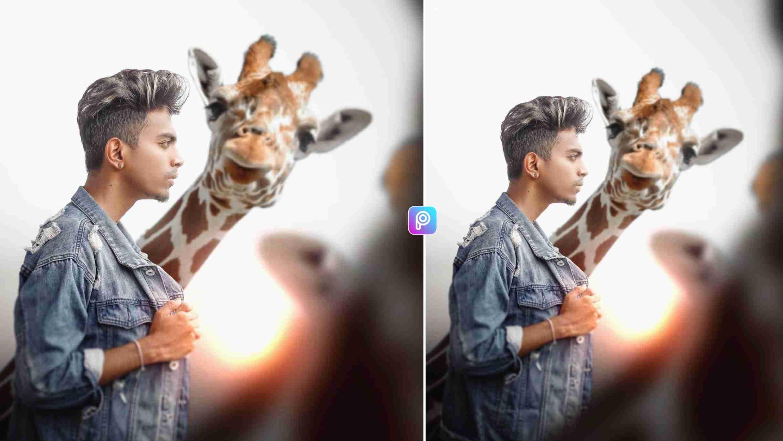 Animals Lover Photo Editing