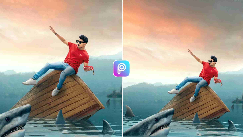 Shark Photo Editing